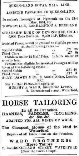 Waterford Mirror and Tramore Visitor. - Thursday 11 December 1884