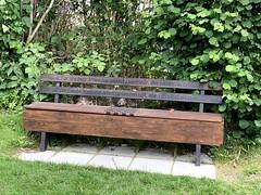 Svendborg - Brecht's bench