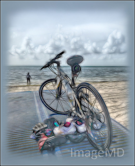Biscayne Bicycle