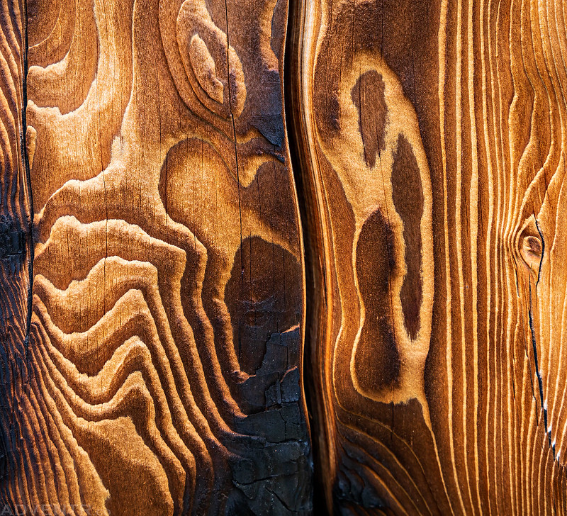 Topographic Wood