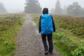 Wanderweg auf dem Gipfelplateau Kahler Asten