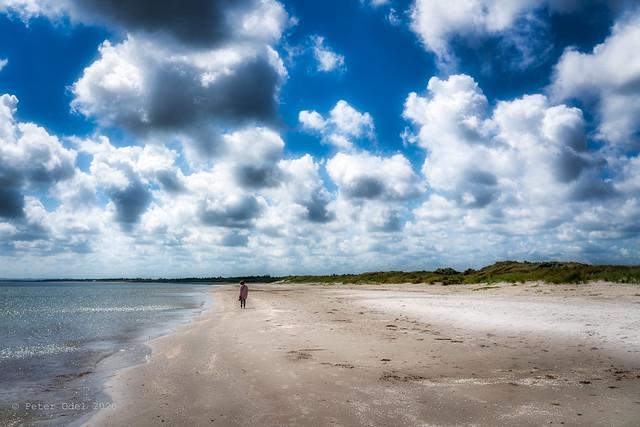 The beach at Aalbæk