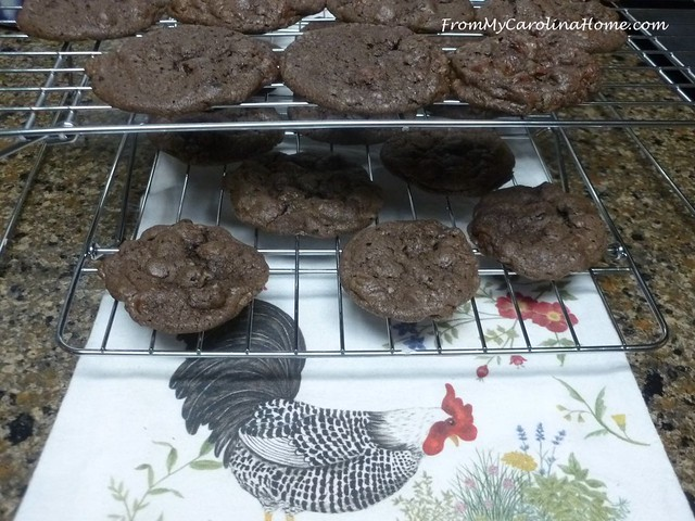 Double Chocolate Delight Cookies at FromMyCarolinaHome.com