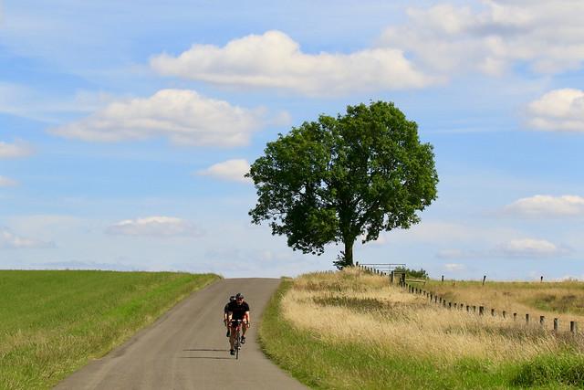 year of the bike