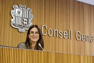 Compareixençade la M.I.Sra. Sílvia Riva davant la Comissió legislativa d'Educació, Cultura... 16/07/2020