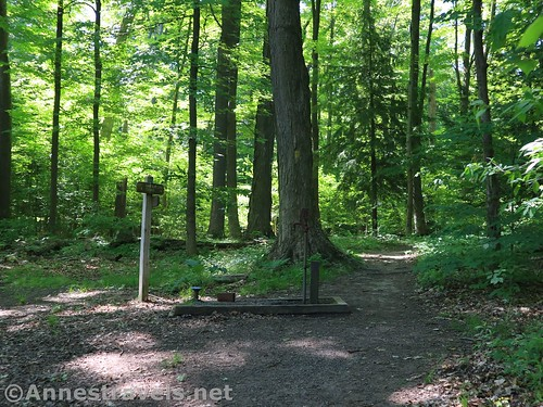 A trail sign, pump, and trail in Webster Park, New York