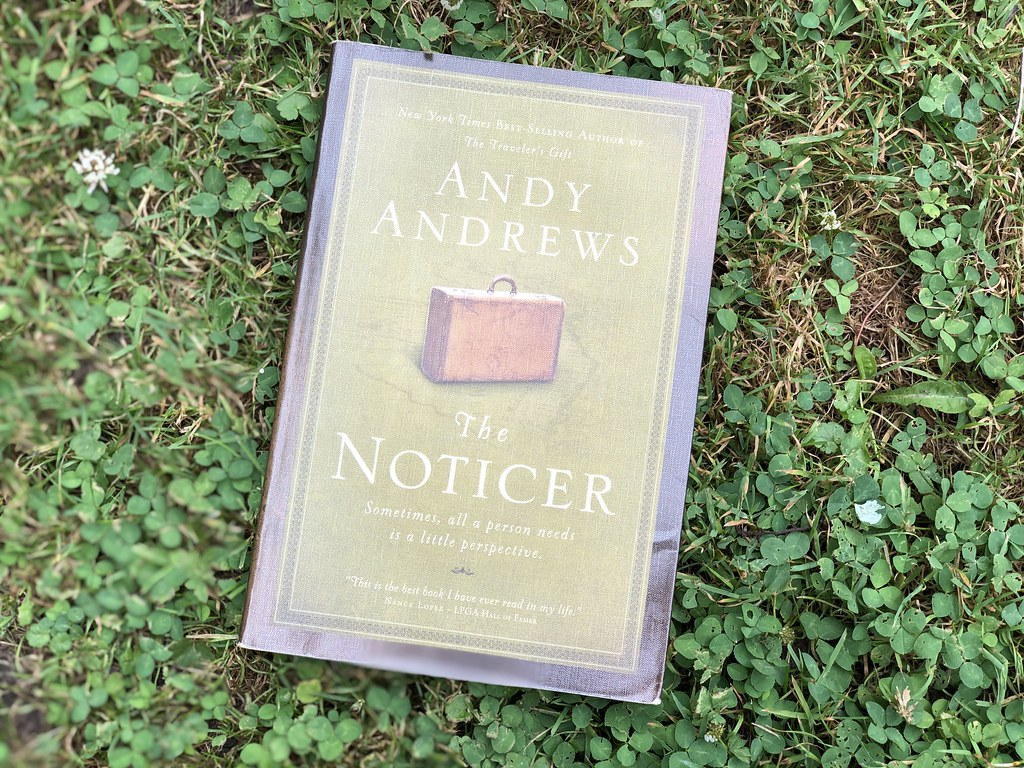 The Noticer book