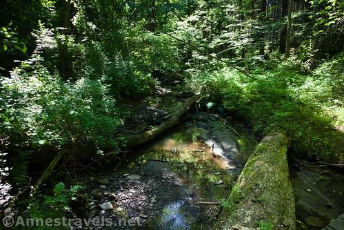 West Creek in Webster Park, New York