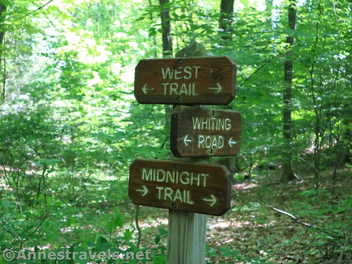Trail sign at the junction for the trail to Whiting Road and the West Trail, Webster Park, New York
