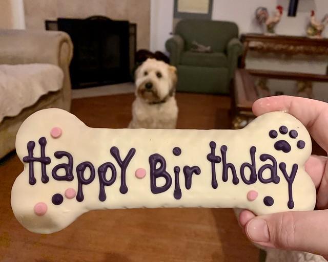 Leia's 5th Birthday