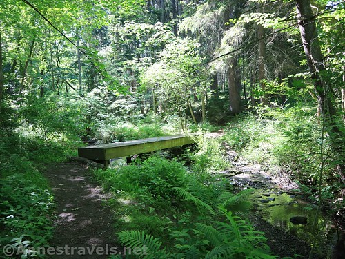 The bridge over West Creek in Webster Park, New York