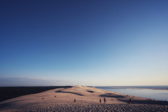 The top of the Dune du Pilat, between forest and ocean