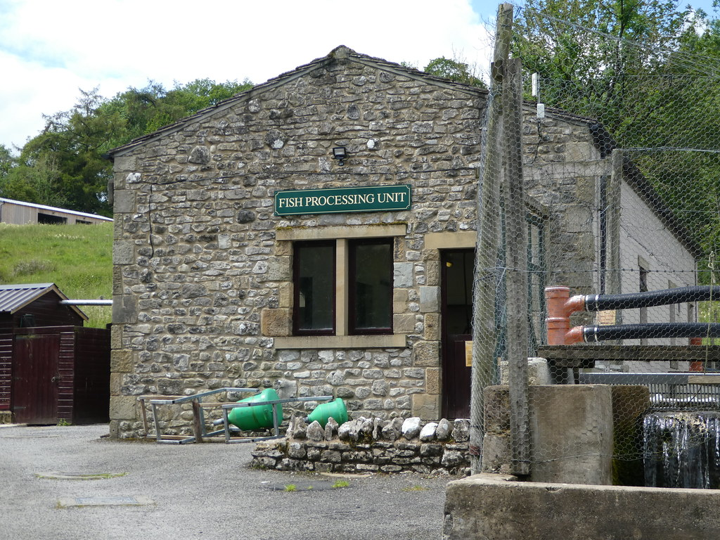 Fish processing unit, Kilnsey