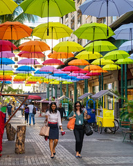 Port Louis Umbrellas