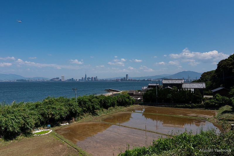 Tokina atx-i 11-20mm F2.8 CF Shooting in Fukuoka