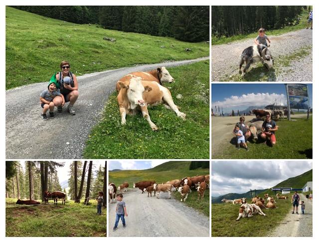 Oostenrijk, kinderrijk! 7 leuke dingen te doen met kids in Saalbach-Hinterglemm - collage 7