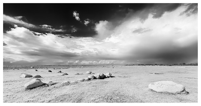 Öland landscape