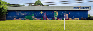 Decatur Self-Storage mural | by Thomas Cizauskas