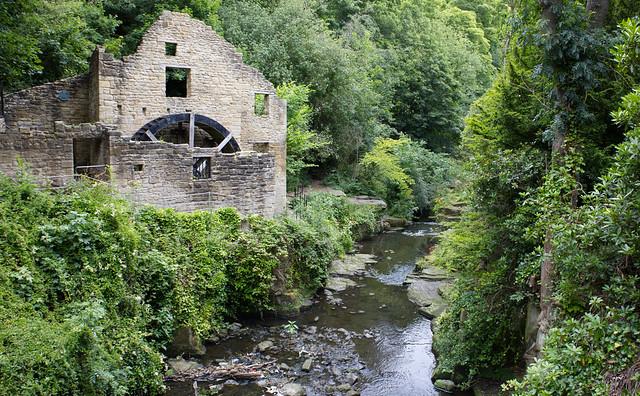 The water mill, Jesmond Dene  IMG_3436