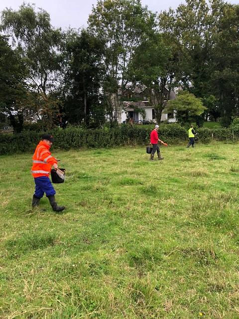 Mourne Grange Farm 2020
