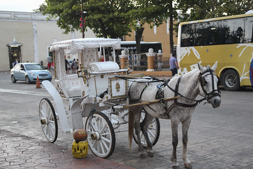 Waiting for a tourist in Valladolid, Mexico