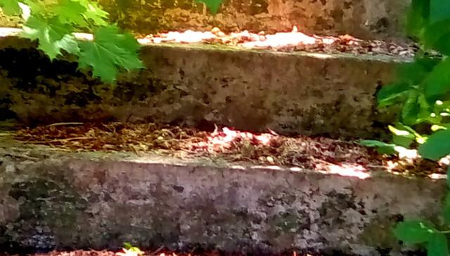 Cement stairs - SFS Menominee Michigan