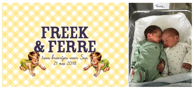 And so the adventure begins … Freek & Ferre –collage 3
