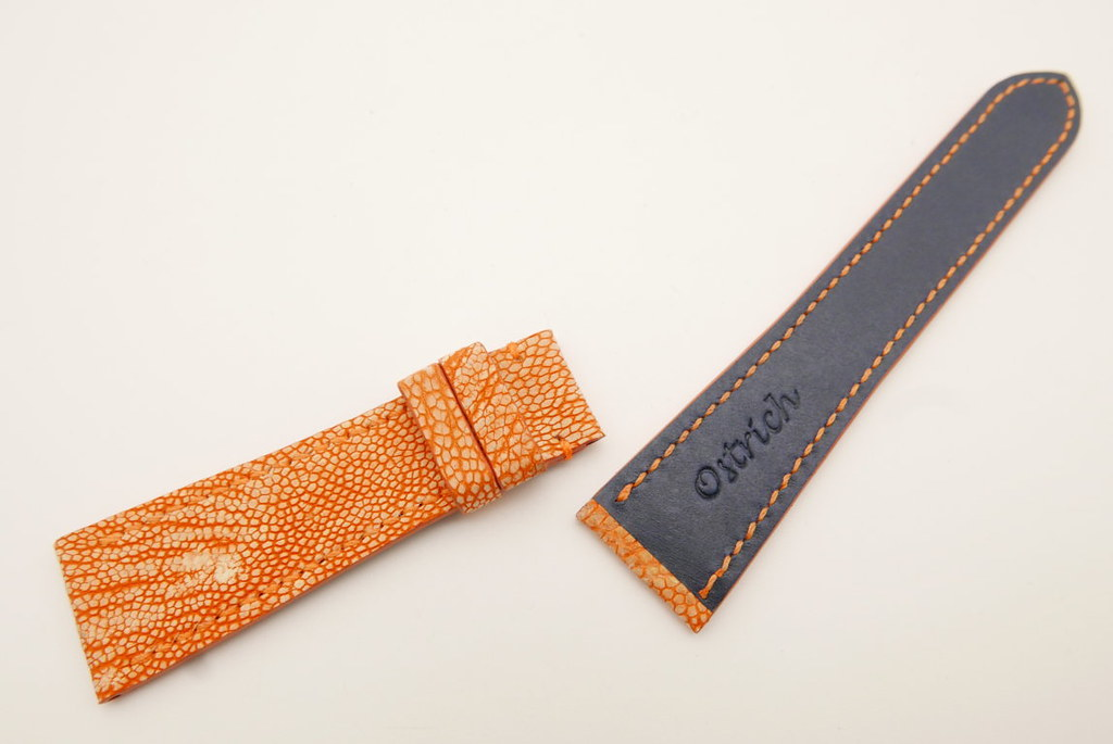 P1650234 (FILEminimizer) | by Ziczac Leather