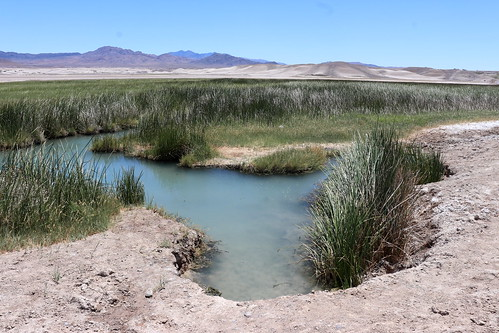 Tecopa Hot Springs, 2020.05.24 (02)