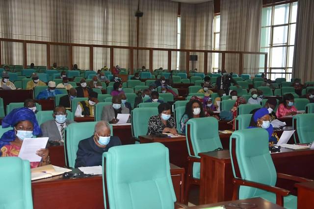 Cameroon-2020-06-30-IAPP-Cameroon Commemorates UN International Day of Parliamentarism