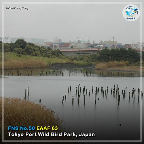 EAAF063 (Tokyo Port Wild Bird Park) Card News