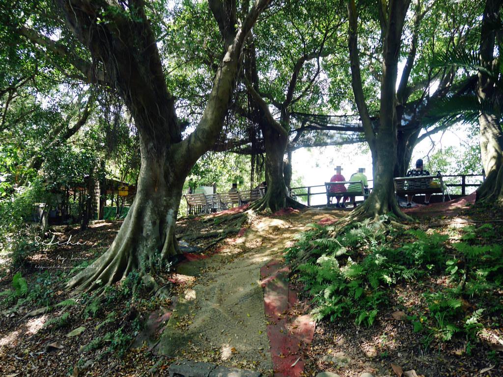 新北鶯歌一日遊隱藏版ig景點推薦孫龍步道絕美360度觀景台必玩景觀步道 (2)