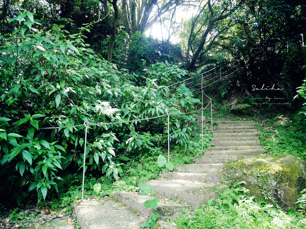 新北鶯歌一日遊景點推薦孫龍步道踏青爬山好玩奇妙石隱藏版私房秘境 (5)