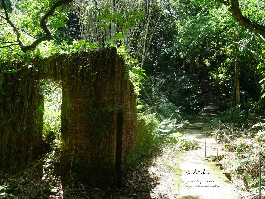 新北鶯歌一日遊景點推薦孫龍步道踏青爬山好玩奇妙石隱藏版私房秘境 (2)