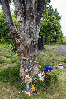 Wee Fairy Trail, Dumbarton Foreshore