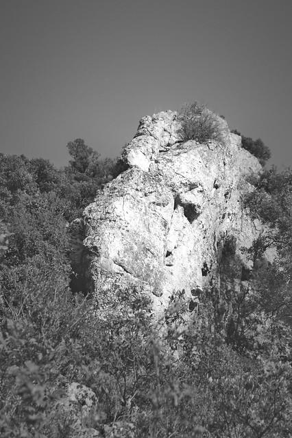 La Baume, Poulx, Gard.