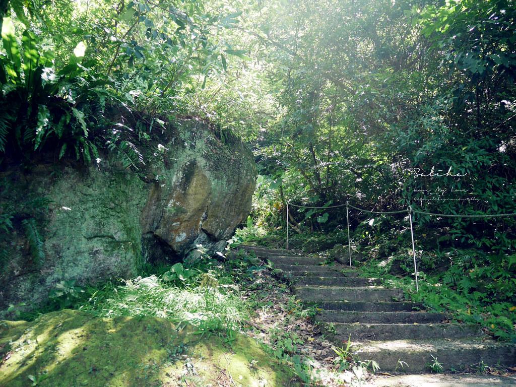 新北鶯歌一日遊景點推薦孫龍步道踏青爬山好玩奇妙石隱藏版私房秘境 (4)