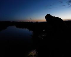 Catching crayfisk at night