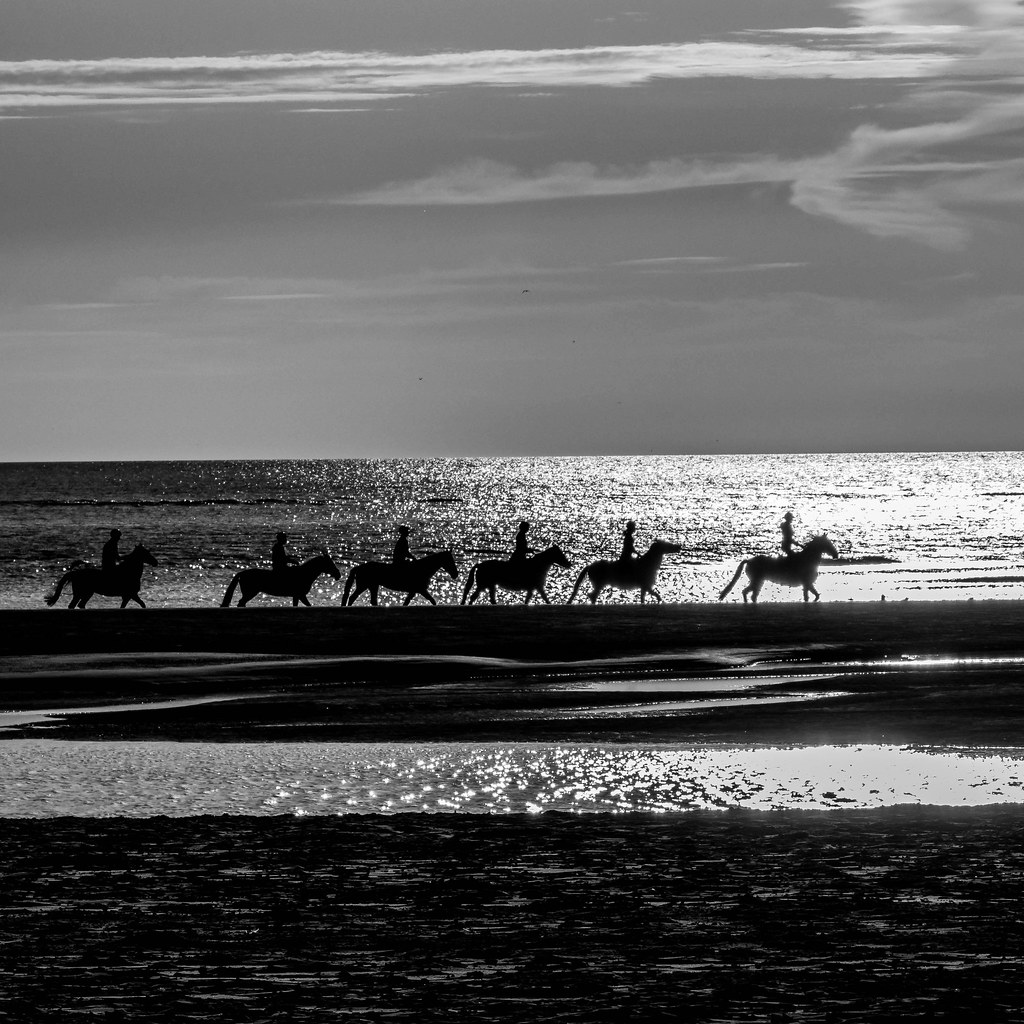 Horse ride on the beach at sunset