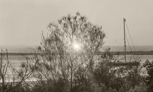 landscape sunset boat cruiser bribieisland sea ocean buckleyshole nikon nature outdoors nikond500 nikon20005000mmf56