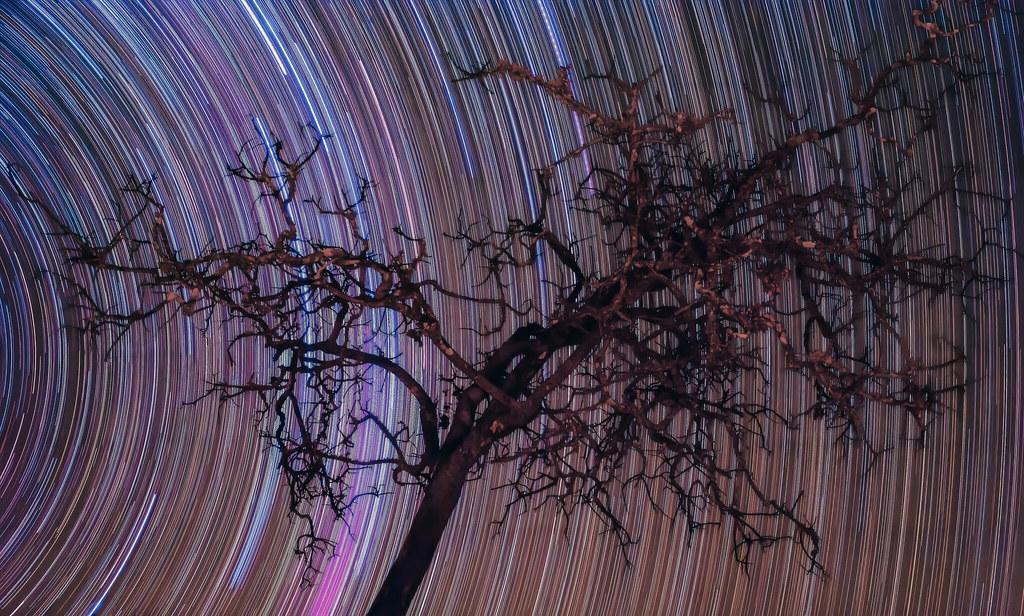 Star-trail