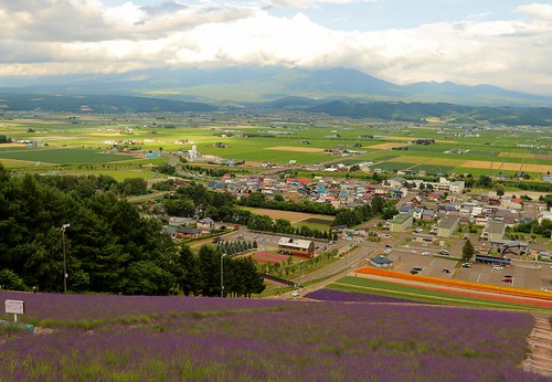 japan travel lavender furano daisetsuzan mountains landscapes hokkaidó irl