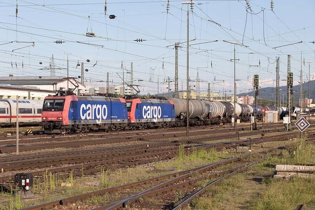 SBB Re 482 008 + 482 031 Basel Badischer Bahnhof