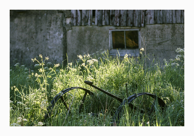 The abandoned farm - Fuji Sensia 100