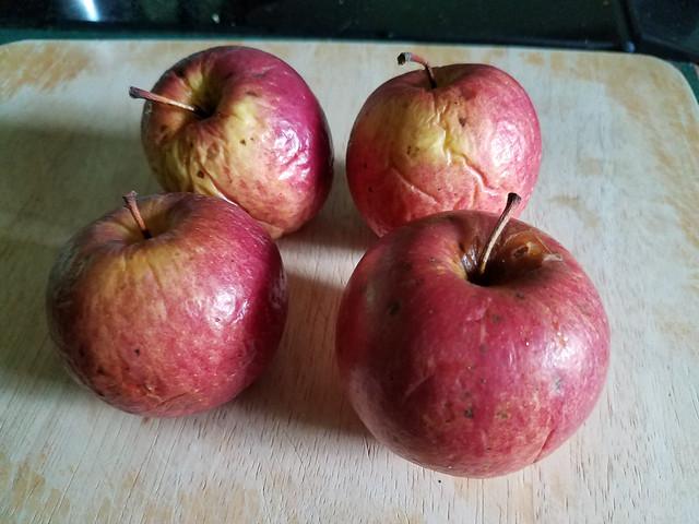 penultimate_apples