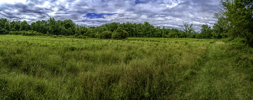 tomburkepreserve outdoor pano scenic landscape summer walk meadow nature peaceful outside preserve panorama panoramic