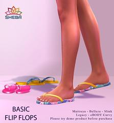 [Sheba] Basic flip flops