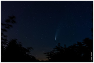 Comet NEOWISE /2 | by FlickrDelusions