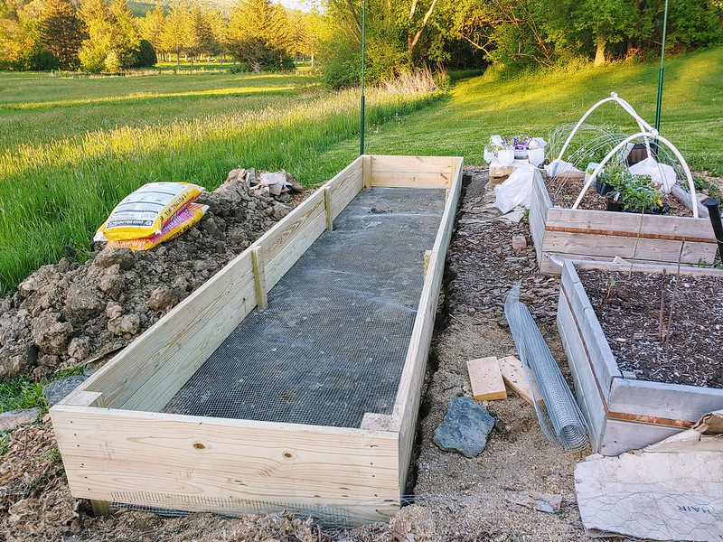 Moving posts into their holes, sinking raised bed into the ground