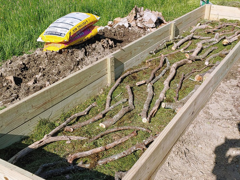 L3: a layer of tree limbs